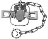 #1 Sleepy Creek Coil Spring Trap (Double Jaw)